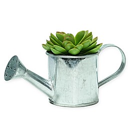 Northlight® 4-Inch Artificial Echeveria Succulent with Tin Watering Can