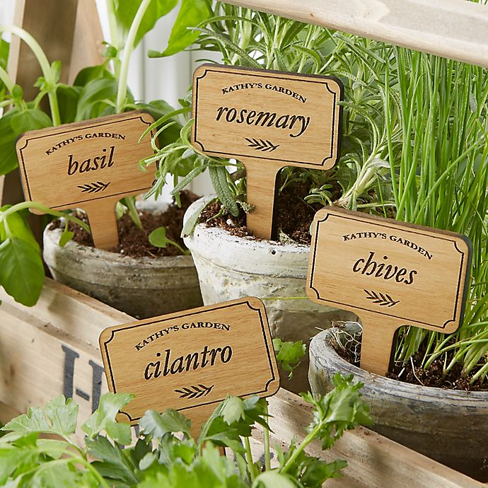 Alternate image 1 for Herb Garden Personalized Wood Plant Marker Set