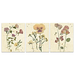 Floral Botanical 16-Inch x 20-Inch Wrapped Canvas (Set of 3)