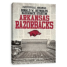 University of Arkansas News Stadium Printed Canvas Wall Art