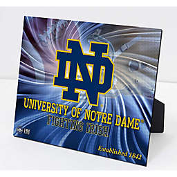 University of Notre Dame Football PleXart 63fc1d69ab6ce
