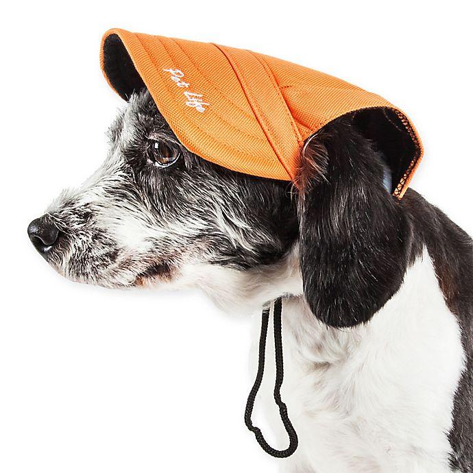 Alternate image 1 for Cap-Tivating Fashion Dog Hat