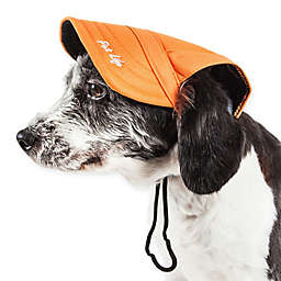 Cap-Tivating Fashion Dog Hat