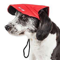 Cap-Tivating Medium Fashion Dog Hat in Red
