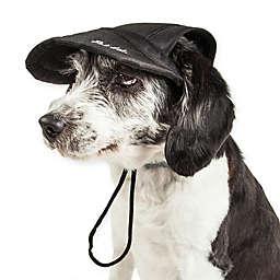 Cap-Tivating Medium Fashion Dog Hat in Black