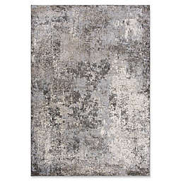 Rizzy Home Abstract Area Rug in Silver