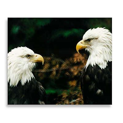 Bald Eagle Twins 16-Inch x 20-Inch Printed Canvas