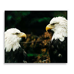 Bald Eagle Twins 16-Inch x 20-Inch Printed Canvas
