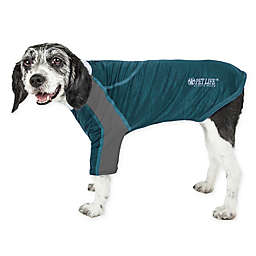 Pet Life® Chewitt Wagassy X-Large Triple-Toned Long Sleeve Performance Dog T-Shirt in Teal