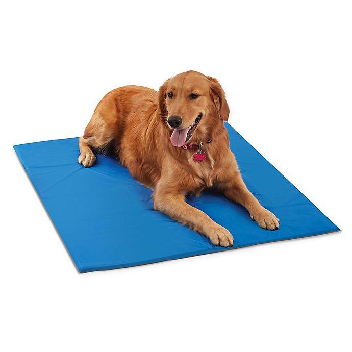 Alternate image 1 for Pawslife® Medium Cool Pet Pad in Blue