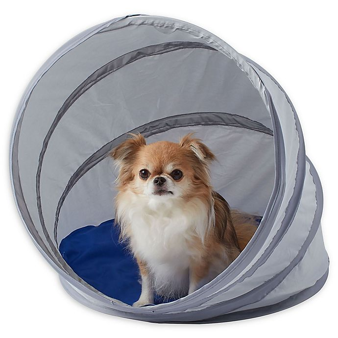 Alternate image 1 for Pawslife® Small Cool Pod Portable Pet Shelter