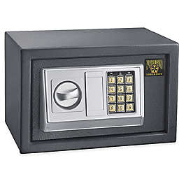 Paragon 0.28 cu. ft. Quarter Master Electronic/Digital Home Office Security Safe