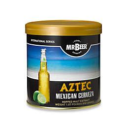 Mr. Beer Aztec Mexican Cerveza Refill Kit