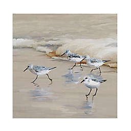 Masterpiece Art Gallery Sandpiper Beach I Amber Canvas Wall Art