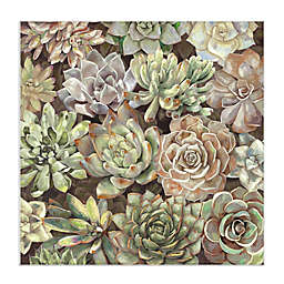 Masterpiece Art Gallery Desert Garden Soft 35-Inch Square Canvas Wall Art