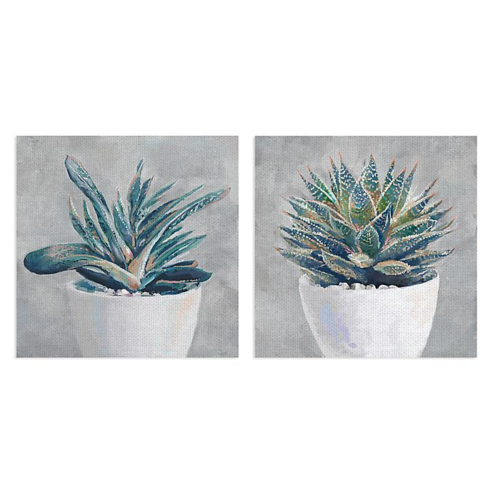 Alternate image 1 for Masterpiece Art Gallery Potted Succulent I and II Canvas Wall Art