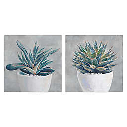 Masterpiece Art Gallery Potted Succulent I and II Canvas Wall Art