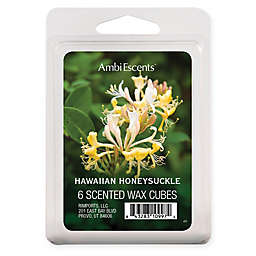 AmbiEscents™ 6-Pack Hawaiian Honeysuckle Scented Wax Cubes
