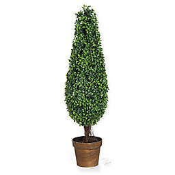 A&B Home 35-Inch Boxwood Tree in Planter
