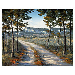 Landscape & Nature Wrapped Canvas Wall Art