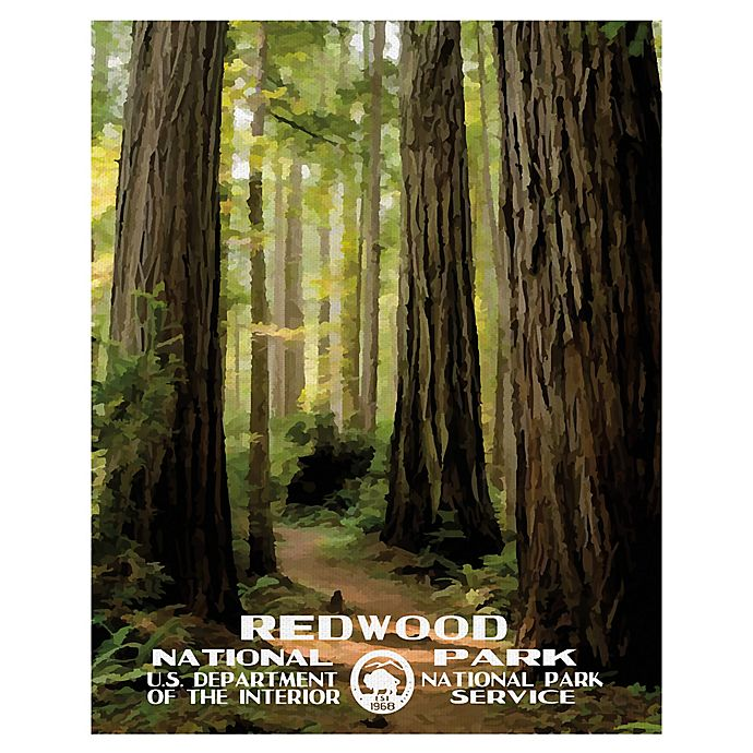 Alternate image 1 for Masterpiece Art Gallery Redwood 22-Inch x 28-Inch Canvas Wall Art