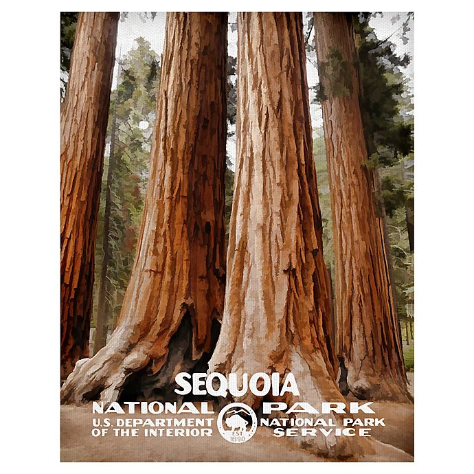Alternate image 1 for Masterpiece Art Gallery Sequoia 22-Inch x 28-Inch Canvas Wall Art