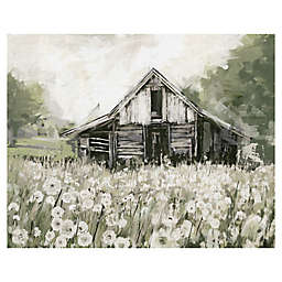 Dandelion Barn Canvas Wall Art