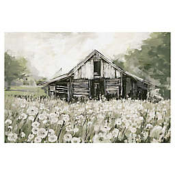 Dandelion Barn 24-Inch x 36-Inch Canvas Wall Art