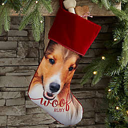 Woof & Meow Personalized Pet Photo Christmas Stocking in Burgundy