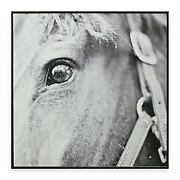 Derby Square 13-Inch x 13-Inch Horse Photo Art