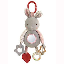 Bunnies by the Bay™ 11-Inch Bunny Developmental Plush Toy in Grey