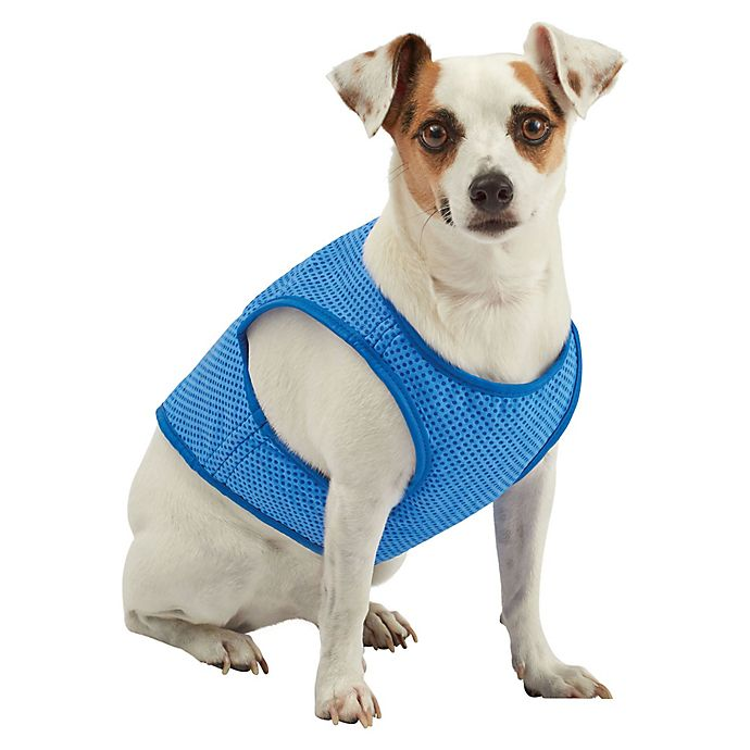 Alternate image 1 for Pawslife® Cooling Vest in Blue
