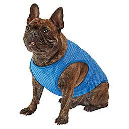 Pawslife® Large Cooling Vest in Blue