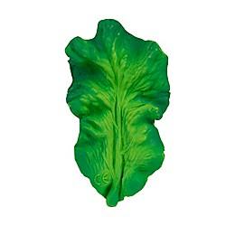 Oli & Carol™ Kendall the Kale Teether in Green