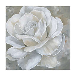 Masterpiece Art Gallery Bombshell Bloom II 30-Inch Square Canvas Wall Art