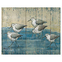 Masterpiece Art Gallery Sandpipers on Wood Canvas Wall Art