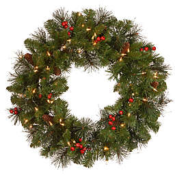 National Tree Company 24-Inch Crestwood Spruce Pre-Lit Wreath with Clear Lights