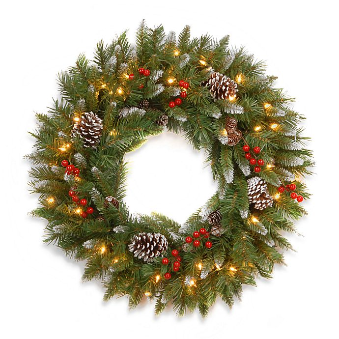 Alternate image 1 for National Tree 30-Inch Frosted Berry Pre-Lit Wreath with Lights