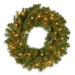 National Tree Company Kincaid Spruce 24-Inch Pre-Lit Wreath with 50 Clear Lights