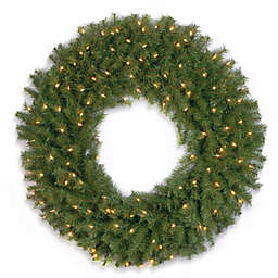 National Tree Company 36-Inch Pre-Lit Norwood Fir Wreath with Clear Lights