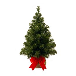 National Tree Company 2-Foot Noble Spruce Christmas Tree with Burlap Bag
