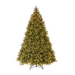 National Tree Company 9-Foot Downswept Douglas Fir Pre-Lit Christmas Tree with Clear Lights