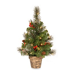 National Tree Company Crestwood Spruce 2-Foot Pre-Lit Tree with Clear Lights