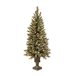 National Tree Company 5-Foot Pre-Lit Glittery Bristle Pine Entrance Tree with LED Lights