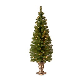 National Tree Company 5-Foot Montclair Spruce Pre-Lit Entrance Tree with Clear Lights