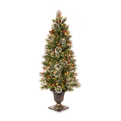 National Tree Company 5-Foot Wintry Pine Pre-Lit Entrance Tree with Clear Lights