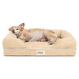Friends Forever Chester Small Memory Foam Pet Couch in Brown