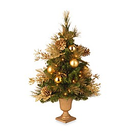 National Tree Company Elegance 3-Foot Pre-Lit Entrance Tree with Clear Lights