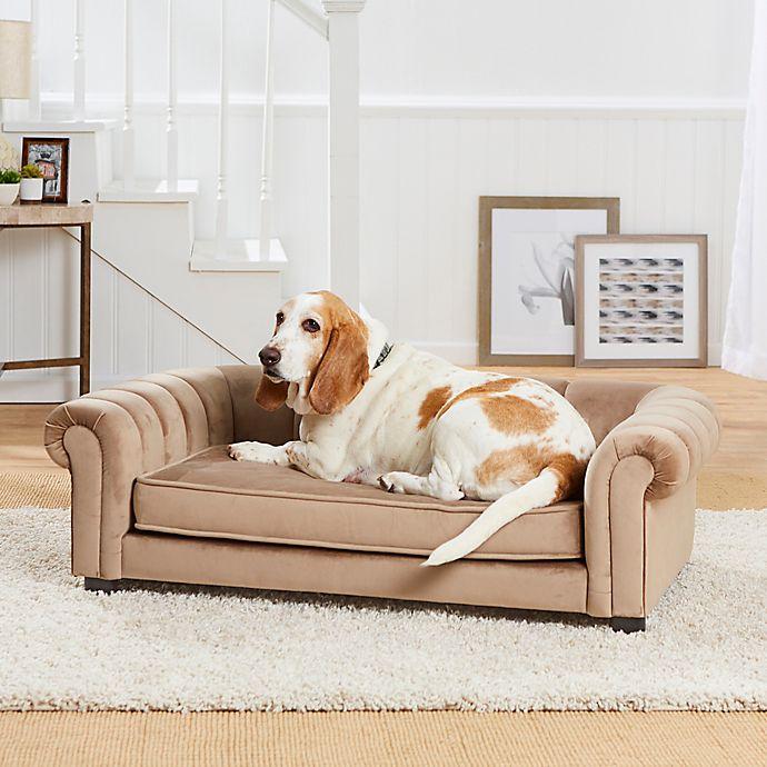 Enchanted Home Pet® Sullivan Large Pet Sofa in Beige | Bed ...