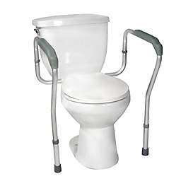 Strange Toilet Safety Support Bedside Commode Bed Bath Beyond Ibusinesslaw Wood Chair Design Ideas Ibusinesslaworg